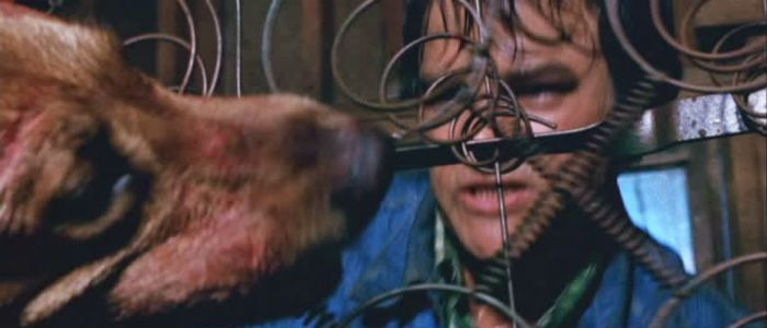 The Best Killer Dog Movies You've Never Seen