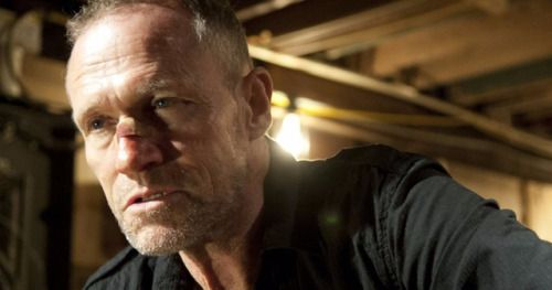 Michael Rooker Has Just Joined Several Big Franchises