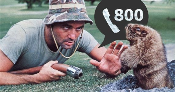 Bill Murray Breaks Down His Mythical 1-800 Number and Why He Needs It
