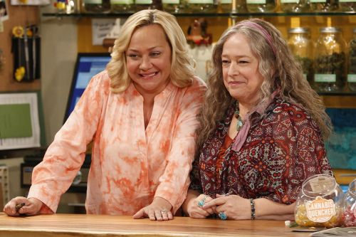 When Does 'Disjointed' Season 2 Come Out?