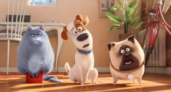 'The Secret Life of Pets 2' Trailer: Those Zany Pets Are Back For Seconds