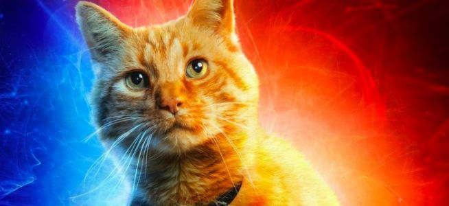 'Captain Marvel' Character Posters Feature Captain Marvel's Cat!