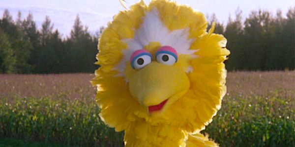 Sesame Street's Caroll Spinney Is Retiring As Big Bird After Nearly 50 Years