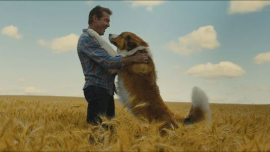 A Dog's Journey Trailer: The Next Chapter in the Bestselling Series Debuts