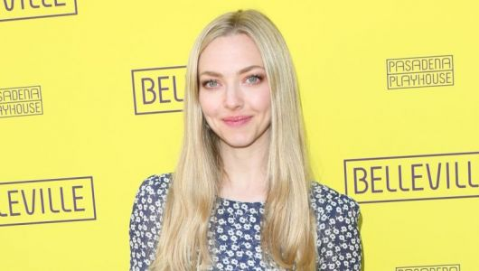 Amanda Seyfried Joins Blumhouse's You Should Have Left