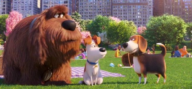 'The Secret Life of Pets' Cast to Reprise Their Roles for Universal Studios Hollywood Theme Park Ride