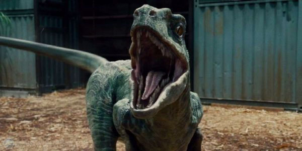 What Makes Jurassic World's Blue Different