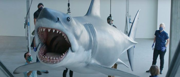 Watch: 'Jaws' Shark Installed in Academy Museum in Los Angeles