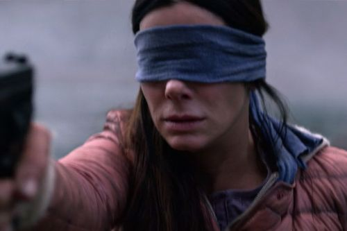 Netflix Reportedly Investigating Use of Deadly Event Footage in 'Bird Box', 'Travelers'