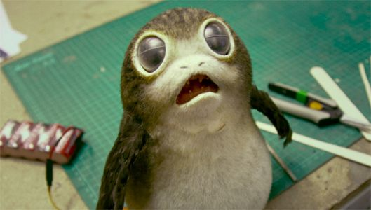 How The Porgs From Star Wars: The Last Jedi Connect To Another Key New Species
