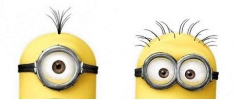 Why do some Minions have one eye, and some have two?
