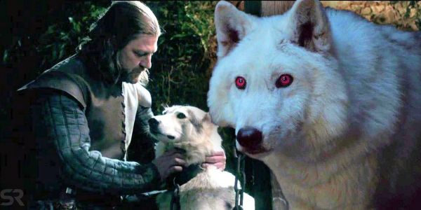 Game of Thrones: Which Direwolves Are Still Alive