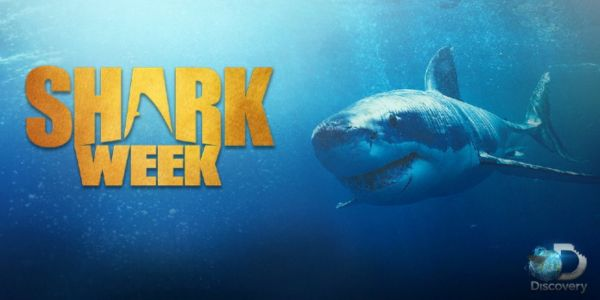 Shark Week 2019 Includes Original Movie Starring Josh Duhamel