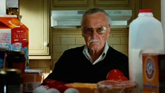 Stan Lee, Comic Book and Pop Culture Legend, Dead at 95