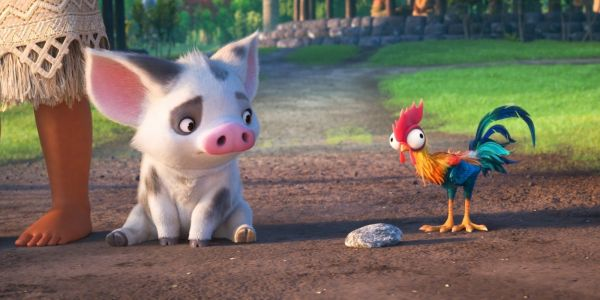 Moana: Why Pua The Pig Stayed Behind On The Island
