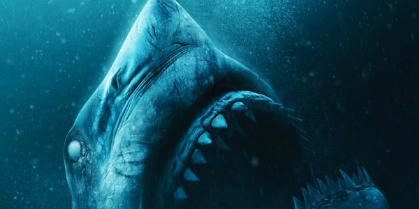 Johannes Roberts Interview - 47 Meters Down: Uncaged