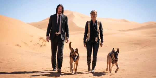 John Wick Director Says He Could Make More Sequels For The Rest Of His Career