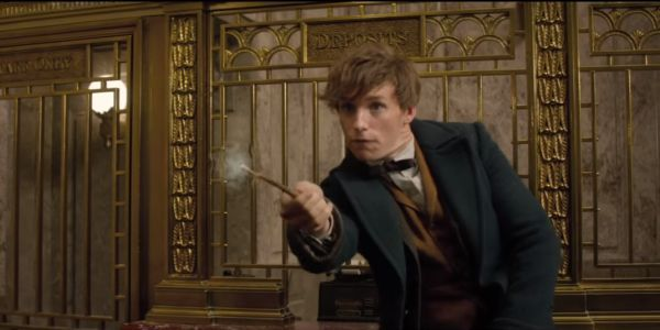 What Fantastic Beasts' Dumbledore Sees In Newt Scamander