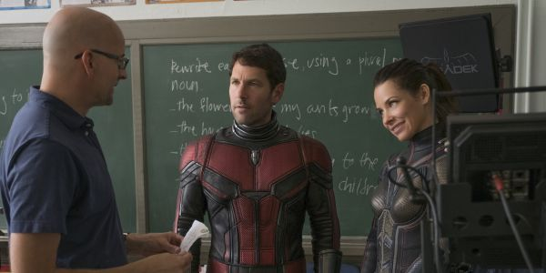 Evangeline Lilly Doesn't Want an MCU Wasp Solo Movie