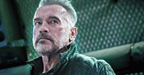 Arnold Schwarzenegger Gets Attacked in Brutal Video, Responds