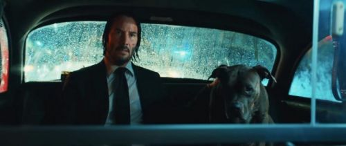 'John Wick: Chapter 3 - Parabellum' Clip: Taxi Drivers Are Much Cooler Than You Think