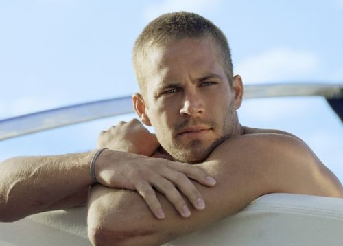 Paul Walker Keeps The Undersea Thriller 'Into The Blue' Above Water
