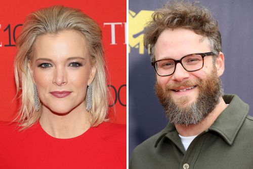 Megyn Kelly Rips Seth Rogen For Refusing Paul Ryan Pic