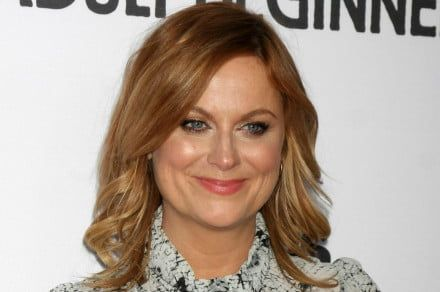Amy Poehler to direct first film, the star-studded Netflix comedy 'Wine Country'