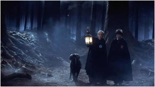 Harry Potter: 25 Things Wrong With Dumbledore We All Choose To Ignore