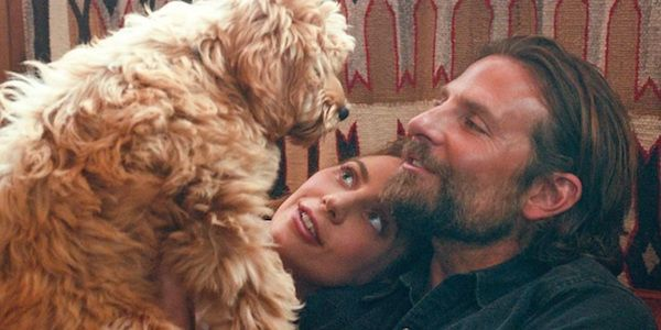 Bradley Cooper Used His Own Dog In A Star Is Born And PETA Is Happy