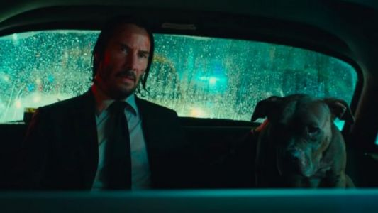 Meet A Very Good Boy In This New JOHN WICK: CHAPTER 3 Clip