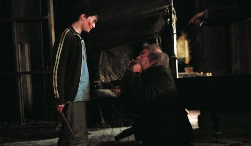 Harry Potter: 20 Things Everyone Gets Wrong About Wormtail