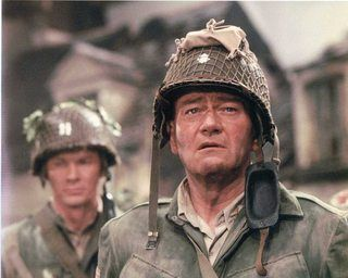 How far from reality were field and general officers who didn't remove rank insignia from their helmets, when near the enemy?