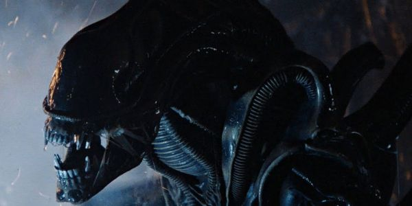 Alien Short Film Puts A Xenomorph In David's Lab | Screen Rant
