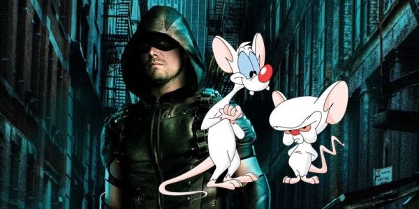 Stephen Amell Wants Arrow Crossover With Pinky & The Brain