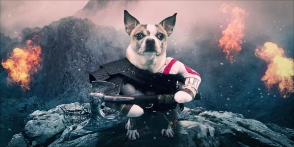 Kratos Is Adorable In European 'Dog Of War' Commercial