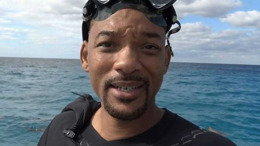Swimming with Sharks Gets Checked Off Will Smith's Bucket List