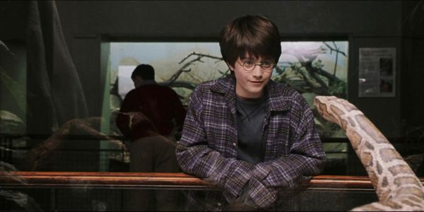 10 Facts About Nagini That Most Fans Don't Know