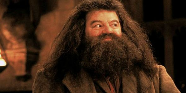 Universal Studios Orlando's New Hagrid Ride Reveals A Never Before Seen Harry Potter Creature