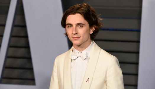 Timothee Chalamet In Talks To Star In Dune Reboot