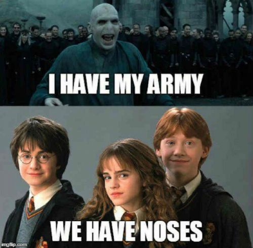 Harry Potter: 10 Hilarious Golden Trio Memes Only True Fans Will Understand