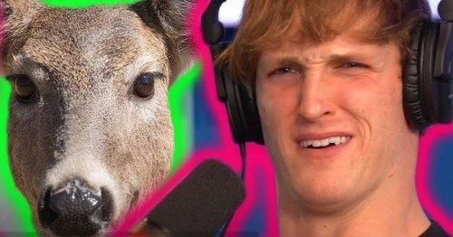 Logan Paul Says He's 'Going Gay' For A Month & Fans Are Outraged: It's Not A 'Choice' & Not A 'Phase'
