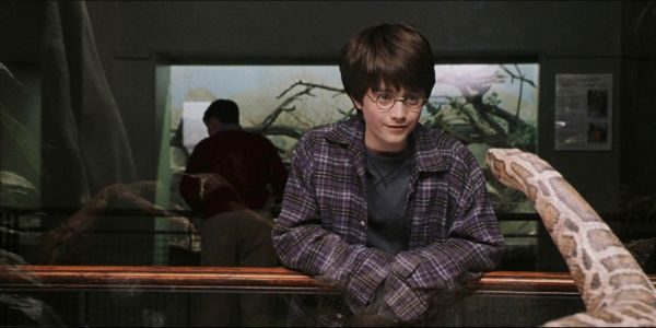 Harry Potter: Magical Abilities & Powers, Ranked