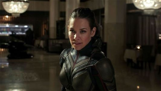 Evangeline Lilly Reflects on Ant-Man and the Wasp's Post Credits Scene