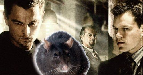 Kickstarter to Exterminate Rat from The Departed Ending Exceeds