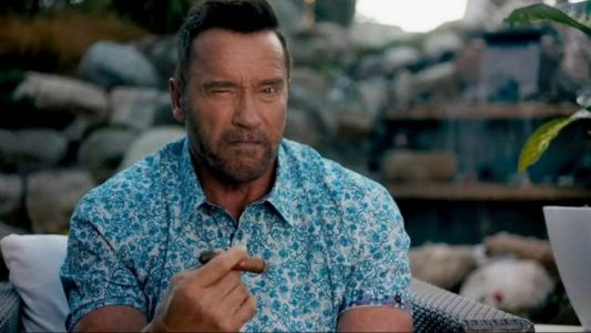 Arnold Schwarzenegger Will Play The President In KUNG FURY