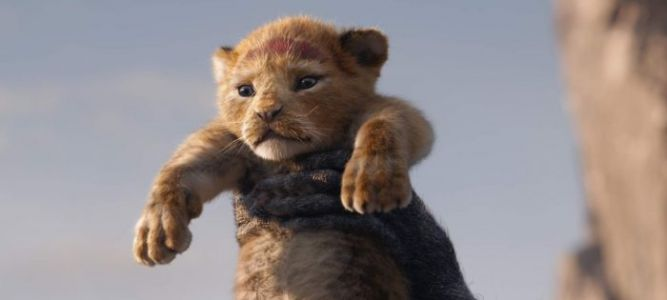 'The Lion King' Sequel is Coming from 'Moonlight' Director Barry Jenkins