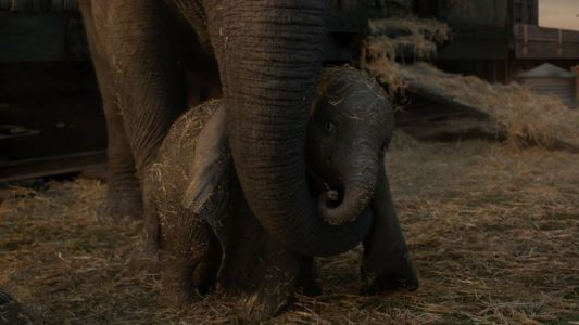 Dumbo International Trailer Will Take You to New Heights