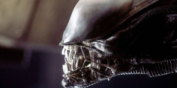 Alien 5: Neill Blomkamp's Canceled Sequel Idea Explained