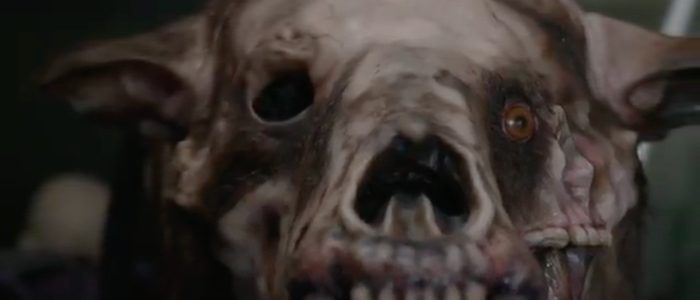 Exclusive 'Annihilation' Behind-the-Scenes Video Reveals How That Horrifying Bear-Creature Came to Be
